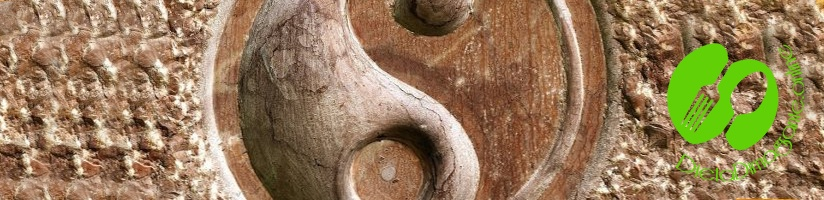 Classificazione Yin e Yang nella macrobiotica